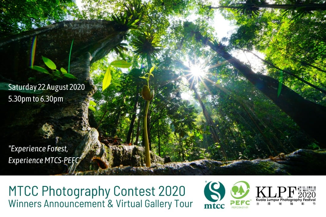 Contest Spreads the Love for Forests among Nature-Loving, Photography Buffs